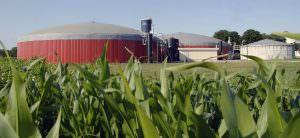Egy a biomassza feldolgozására létesített üzem.