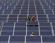 Napelem értékesítés – Miért fontos a jó napelem kivitelező cég!?