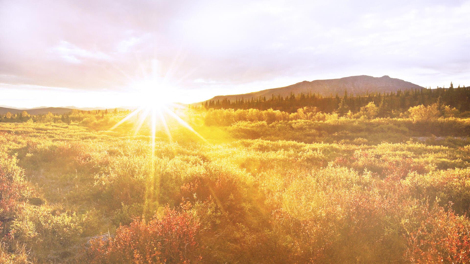 Napenergia aktív és passzív felhasználása napelemmel és napkollektorral