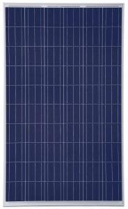 Trina Solar PD05.