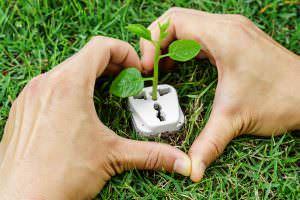Zöld, tiszta, megújuló energiaforrás